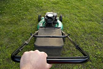 ER DET ikke like viktig å klippe gresset som å vaske badet?