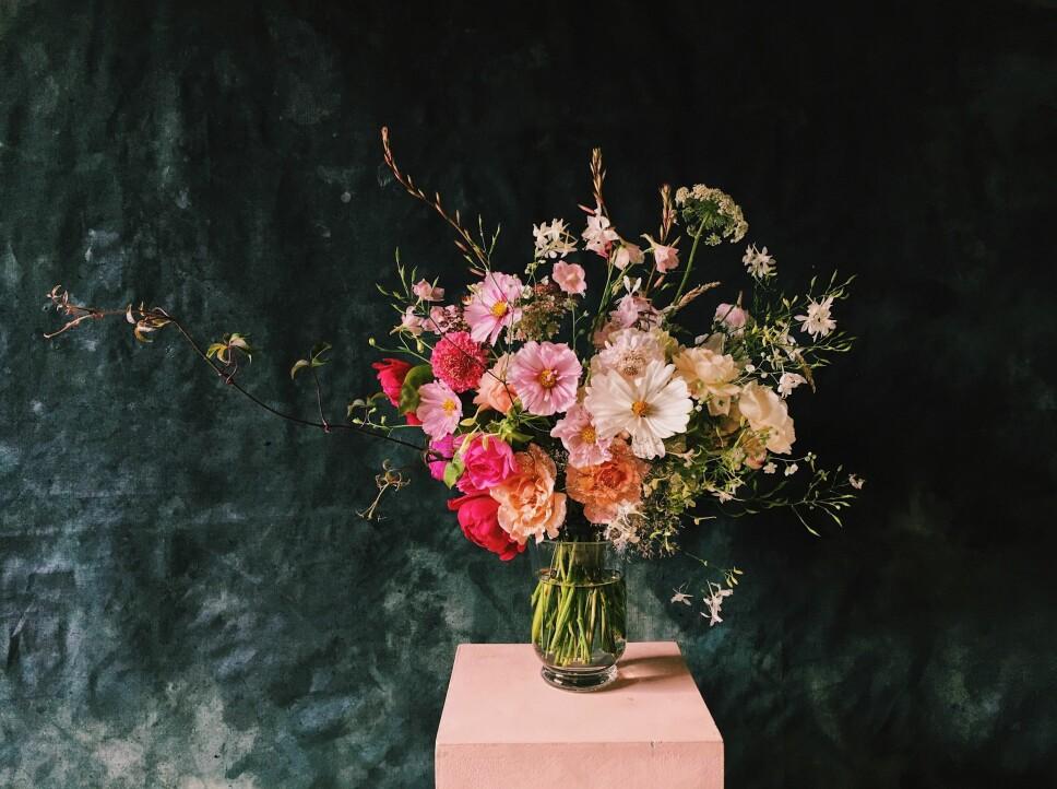 BLOMSTERSPRÅK: Lær hva blomstene du gir betyr og bli klokere på rosenes spesielle språk.