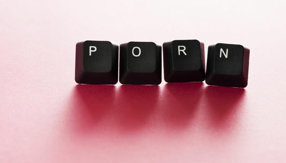 MANGE MISFORSTÅELSER: Pornoindustrien har sørget for at mange har forvridde forestillinger om egen kropp og prestasjon i senga. I stedet for å svartmale pornoen, bør vi imidlertid sørge for riktig informasjon om sex, mener Sex og samfunn.
