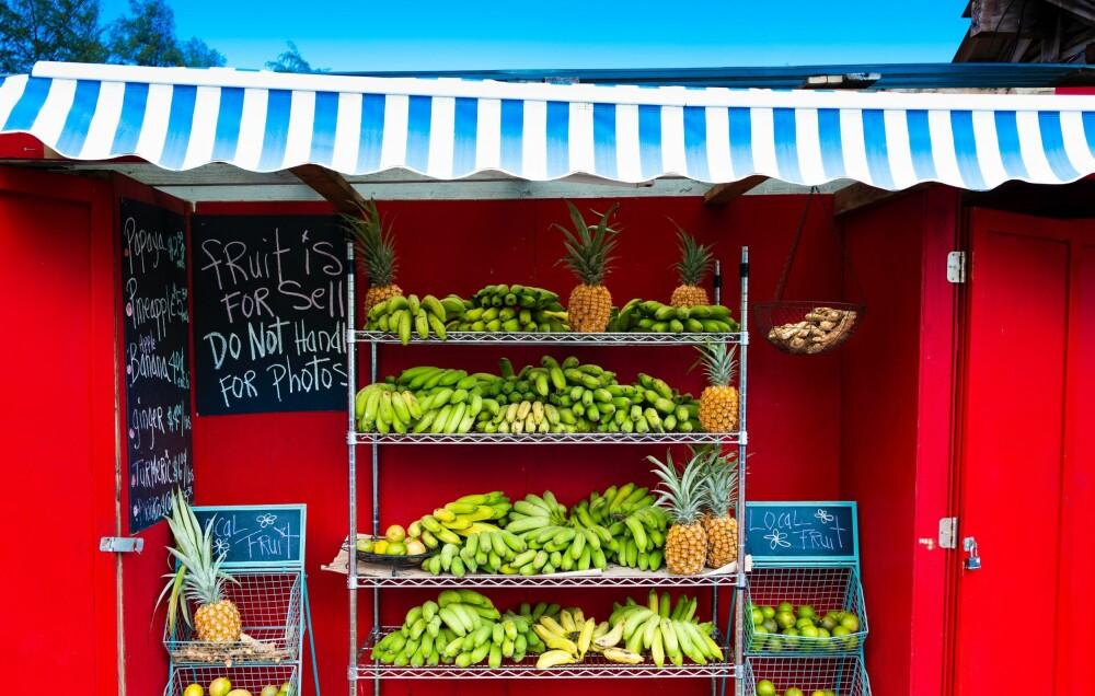 FUNFACT: Bananblomsten kan også brukes i matlaging. I Sørøst-Asia blir den brukt både rå og kokt i supper og karriretter. Den myke kjernen inni bananstammen blir også brukt, særlig i burmesisk matlaging.