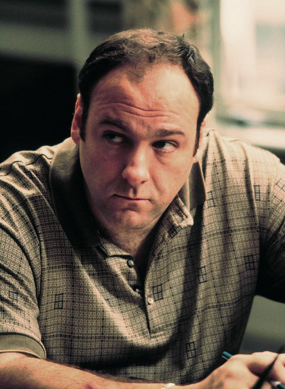 ELSKET OG HUSKET: James Gandolfini er mest kjent for rollen sin som Tony Soprano, og er savnet av fans verden over.