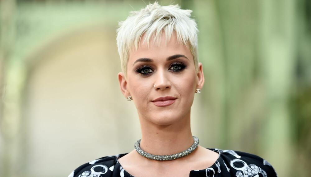 BESKYTTELSE: Katheryn Elizabeth Hudson, som hun egentlig heter, skapte karakteren Katy Perry for beskyttelse.