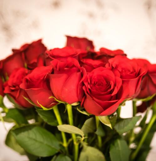 Hva betyr egentlig en bukett røde roser? Dette er blomstenes mystiske språk